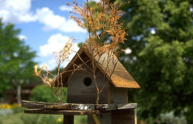 Housing for the Birds